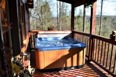 Lazy Bear Hot Tub