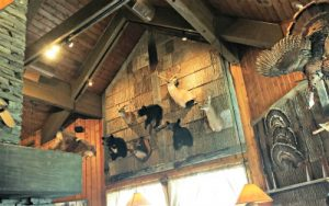 crocketts lazy bear cabin animals
