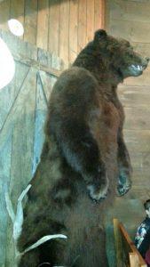 lazy bear cabin crocketts bear