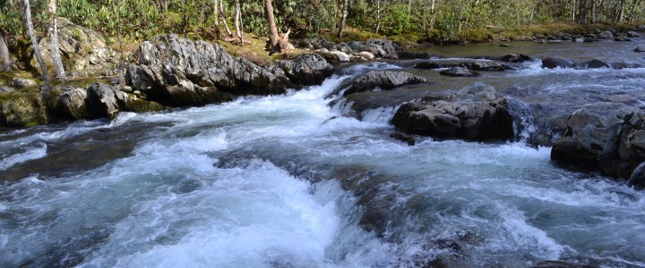 Whitewater in the Smokies!